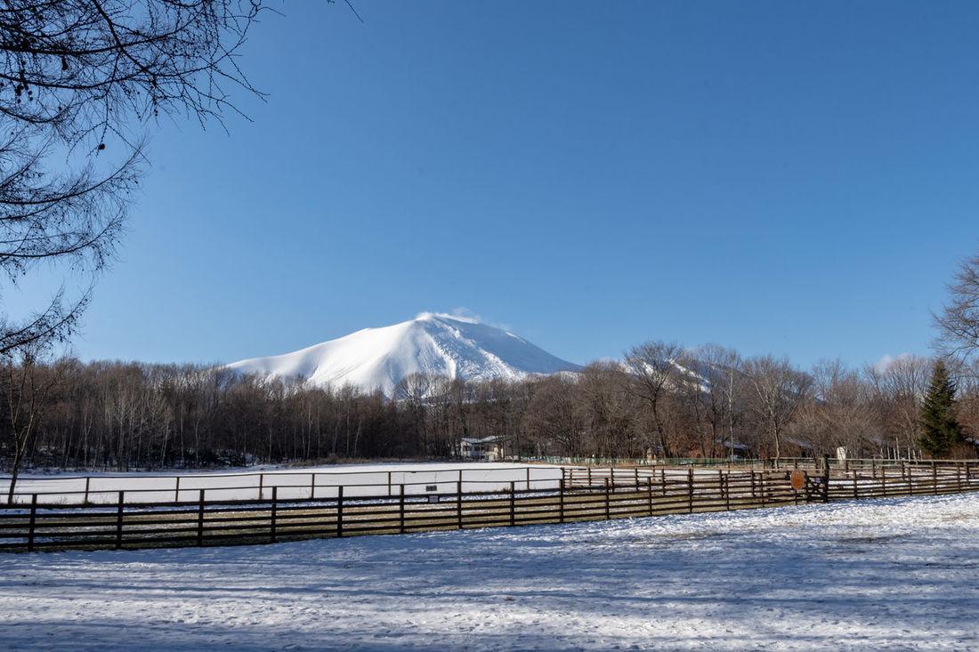 Mt. Asama (Asamayama) Snowy Mountains Tree Snow Cold Temperature Mountain Winter Snowing Frozen Sky Landscape