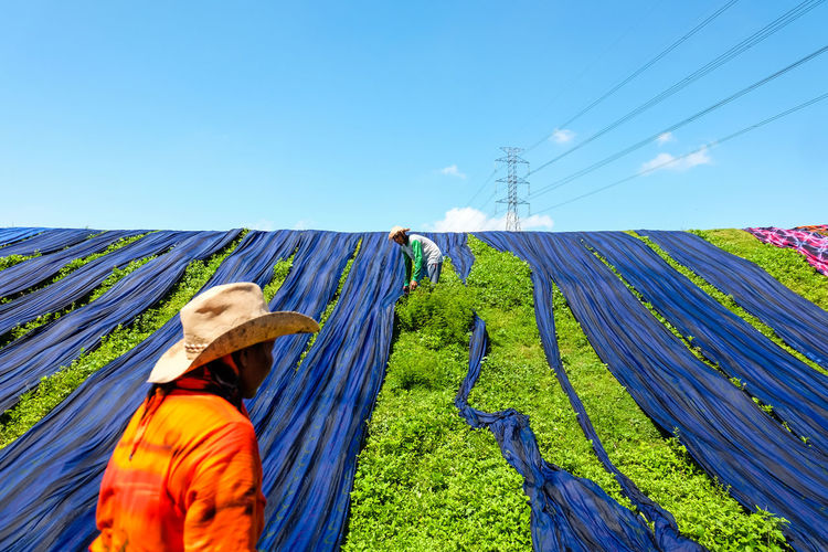 People drying blue fabrics on grassy field against blue sky during sunny day