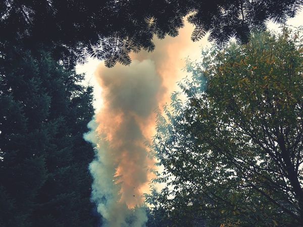 Beauty In Nature Smoke - Physical Structure