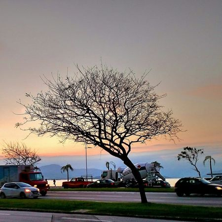 Outono. Bare Tree Tree Car Land Vehicle Sunset Transportation Sky First Eyeem Photo
