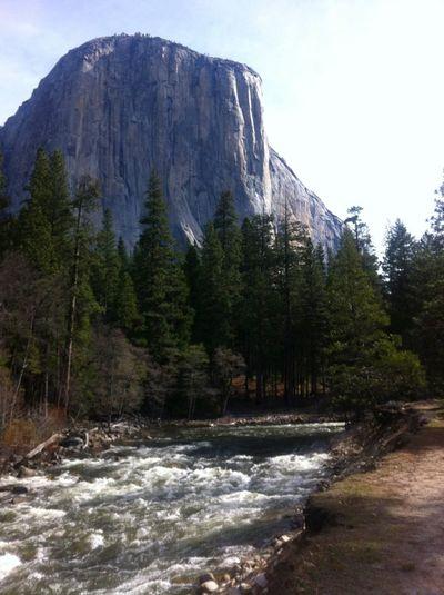 Nature Love Landscape Yosemite National Park