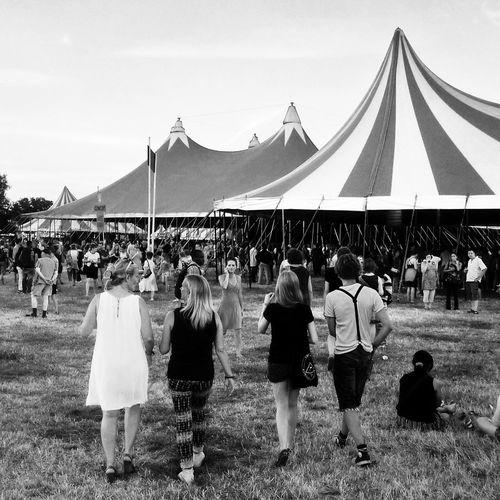 Festival festival weide