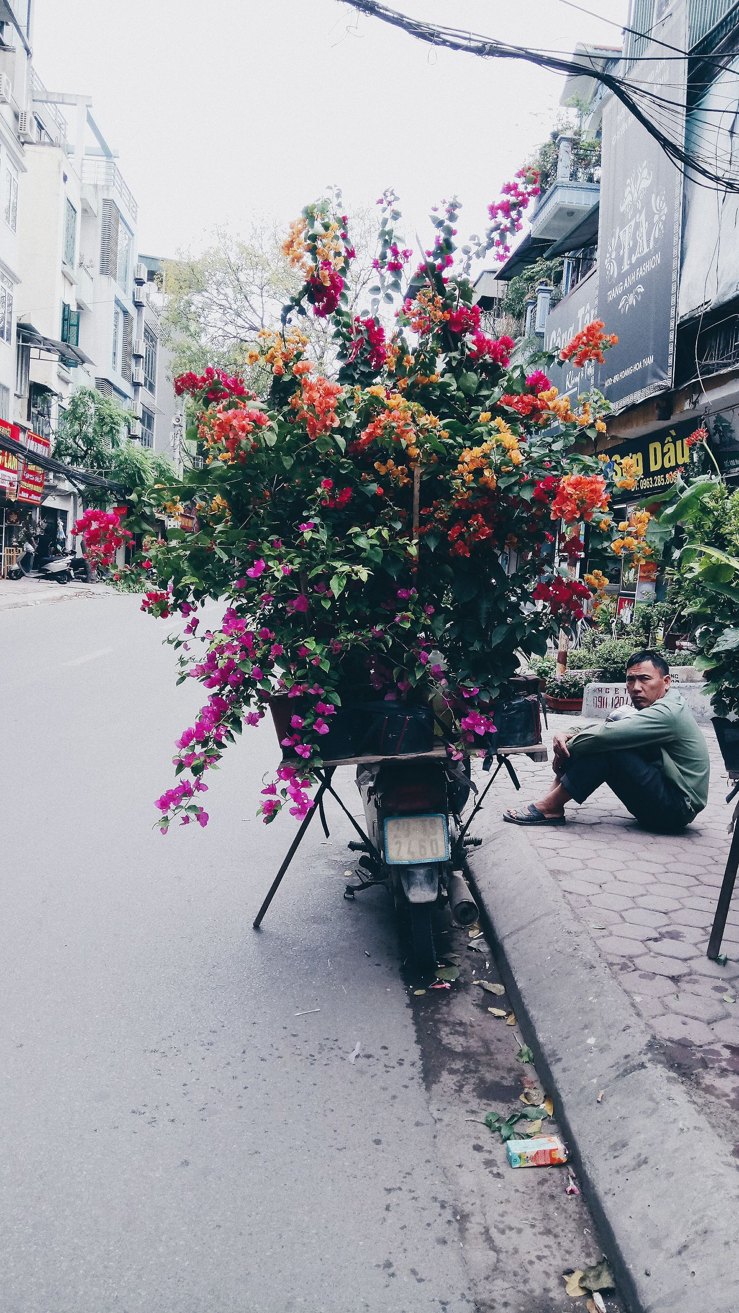 flower, building exterior, architecture, real people, built structure, street, men, land vehicle, outdoors, transportation, day, plant, one person, growth, city, nature, lifestyles, road, tree, women, freshness, full length, clear sky, window box, florist, people