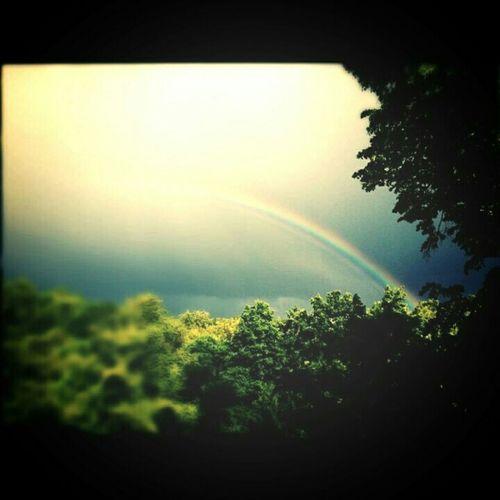 Rainbow Regenbogen