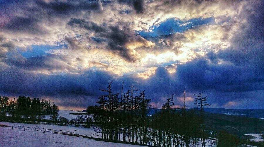 ここはまだ3℃…🐧 Cloud - Sky Sky Dramatic Sky Tree Sunset Cloudscape Nature Beauty In Nature Landscape Tree Snow Skyscrapers Chica's Sky Sky And Clouds Snowlandscape Seascape Photography 木 北海道 Naturelandscape Tree And Snow Chica's Winter 自然 Sunset_captures Black_chica1704 Chica's Photo Trees