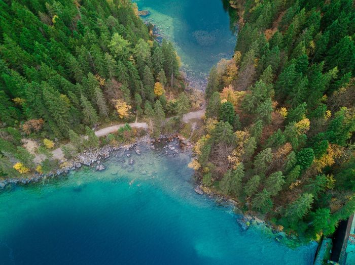 Eibsee Beauty In Nature Water Nature Mountain Tree No People Outdoors Landscape Dji Mavic Pro High Angle View Bayern Germany Germany Perspectives On Nature Perspectives On Nature