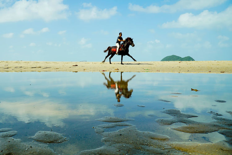 A man riding a horse at the Samira Beach, Songkhla, Thailand with a beautiful landscape and a reflections on the water. EyeEm EyeEm Best Shots Nature Reflection Beauty In Nature Cloud - Sky Day Domestic Animals Eye4photography  Horse Horse Riding Horseback Riding Livestock Mammal Men Nature One Animal One Person Outdoors People Reflection Reflections In The Water Riding Sky Water