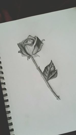 Sketchin Love ArtWork My Drawing Artist Art Drawing Rosé