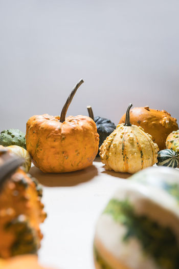 Close-up of pumpkins on table against gray background