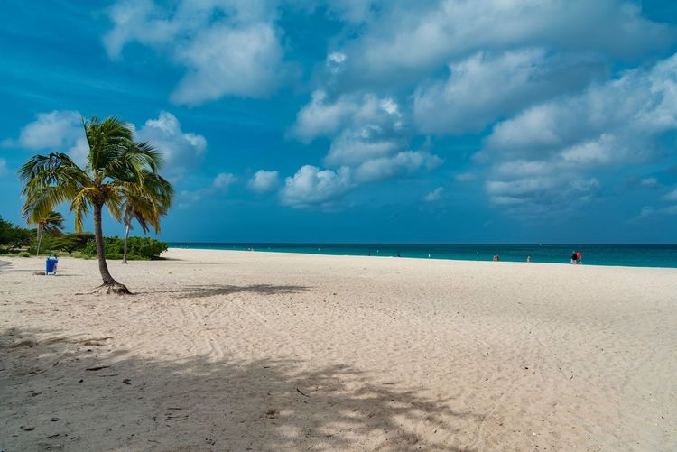 Calm Exotic Tranquil Beach Beauty In Nature Blue Caribbean Cloud - Sky Day Horizon Over Water Idyllic Island Leisure Nature No People Outdoors Palm Tree Paradise Relax Resort Sand Scenics Sea Sky South America Summer Tranquil Scene Tranquility Travel Destinations Tree Tropical Vacations Warm Water