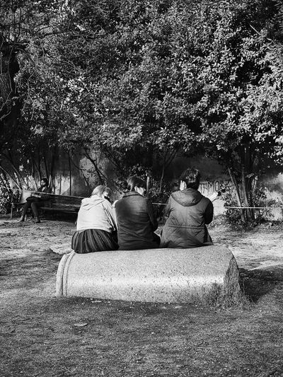 Rear view of people sitting in park