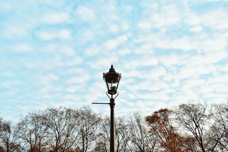 Cloud - Sky Sky Outdoors Day No People Lamp Park London Autumn Autumn Colors