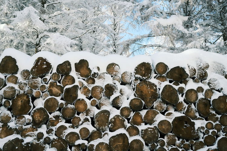Snow covered rocks on field