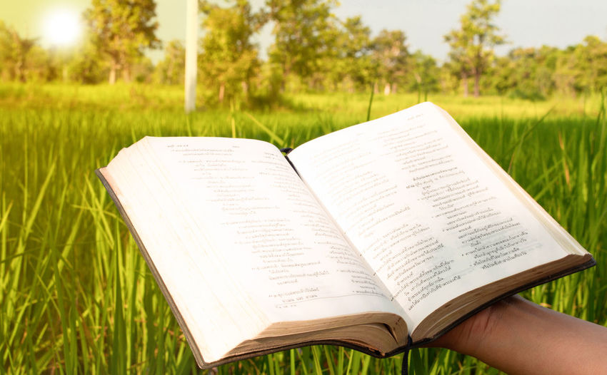 Close-up of hand holding bible on field