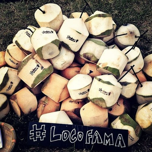 I've got a lovely bunch of coconuts! Locofama Clockenflap