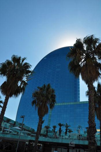 Barceloneta, skyscraper Tropical Climate Palm Tree Architecture Building Exterior Skyscraper Rich Classy Barceloneta Windows Glass Glass - Material Glass Palace
