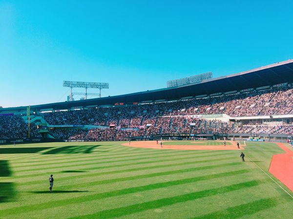 Sport Stadium Blue Large Group Of People Playing Field Sports Team Competition Green Color Team Sport Baseball