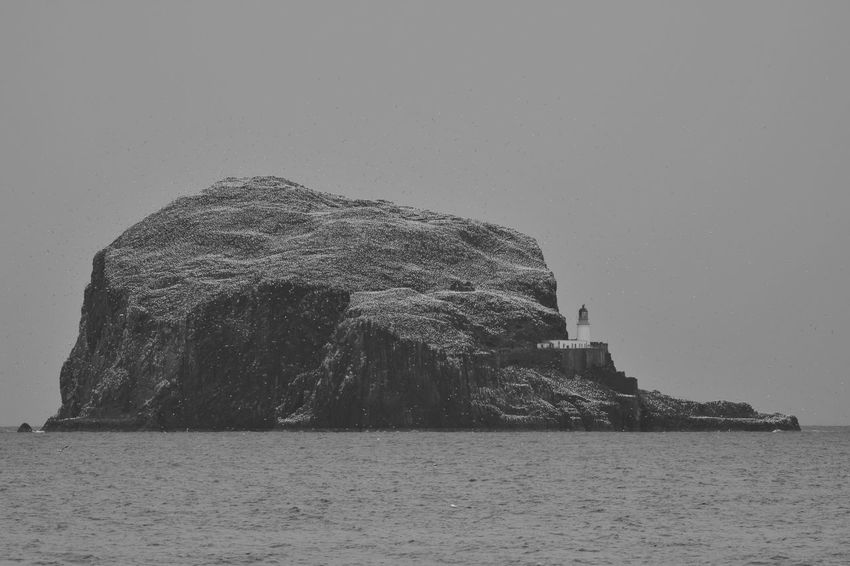 Bass Rock Beauty In Nature Gannets Nature No People Outdoors Scenics Sea Water EyeEmNewHere