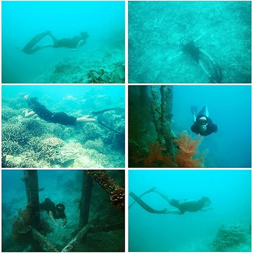 """""""Freediving is about silence…the silence that comes from within."""" Jacques Mayol Freediving Spearfishing Helloworld Gadgetgrapher Beach Sea Ocean Iphonesia Marítim Freestyle Freedive Adventure Quote Instagram Instanusantara Indonesiajuara Indonesiaparadies Culture INDONESIA"""