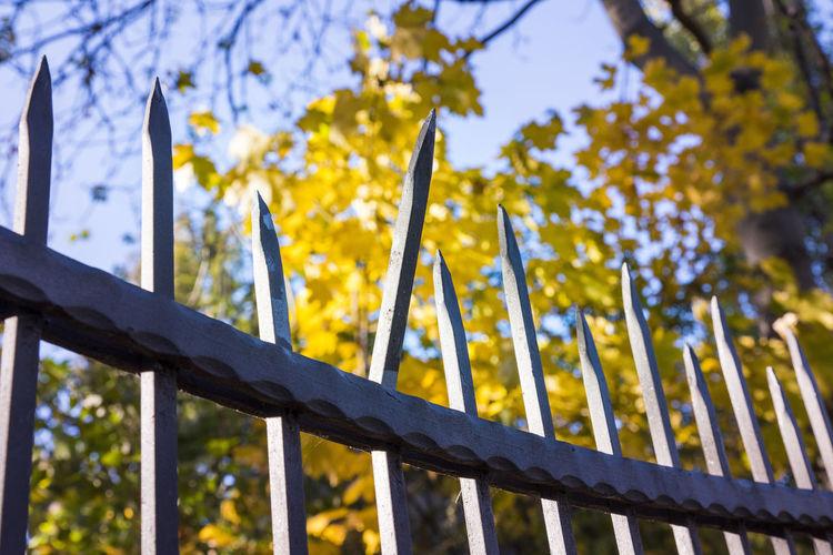 fence spike