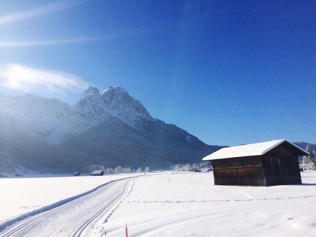 Crosscountry Skiing Blue Sky Snow