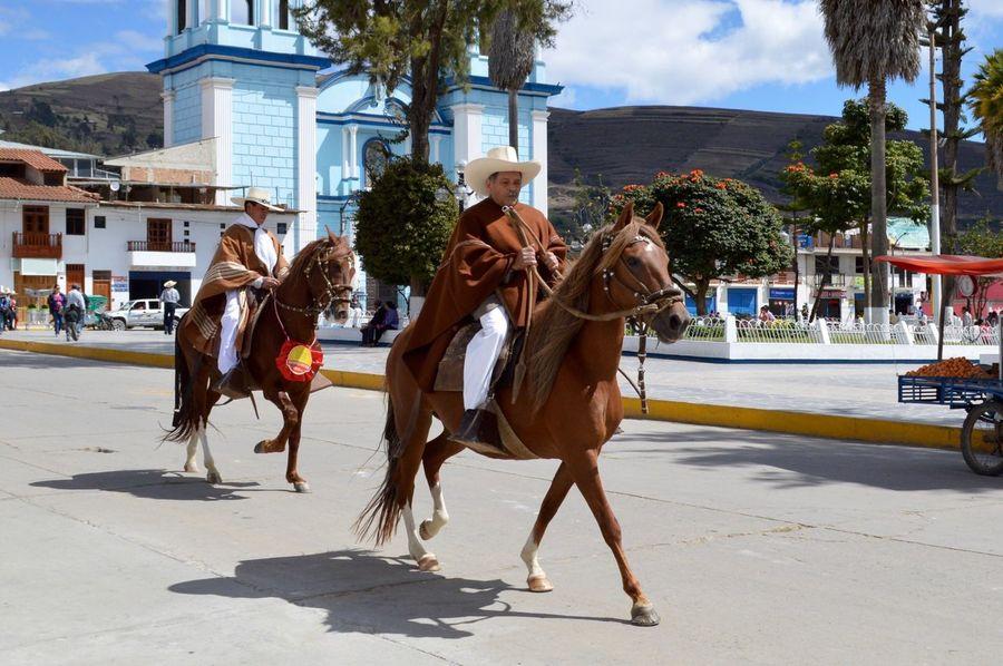 Celendin Peru Horses People