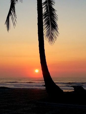 Guarujá Brazil Sunrise_Collection Taking Photos Sunrise Blessed  Enjoying The Sun Photography Endlesssummer Hello World Beautiful Life Is A Beach Magic Moments Capture The Moment Waves, Ocean, Nature Colors Beachphotography Amazing View MyPhotography