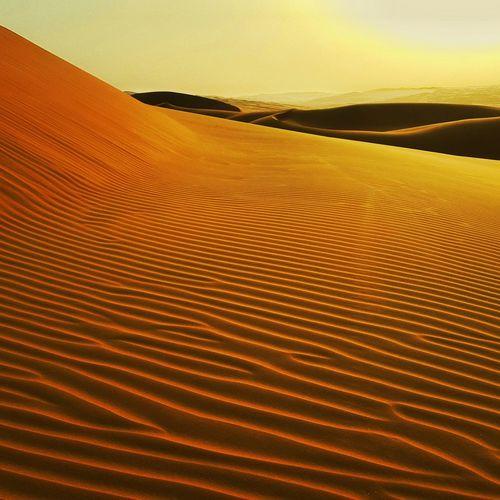 Empty Quarter, UAE