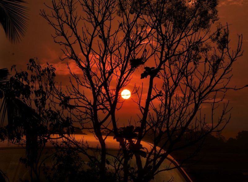 ..tHe.. LigHt.. oF.. LovE.. SeeS.. nO.. waLLs.... Silence Of Nature Dreams My World Colorful Cloud - Sky Orange Color Kerala Tree Sun Beauty In Nature Scenics Silhouette Tranquility Nature Landscape Outdoors Silence