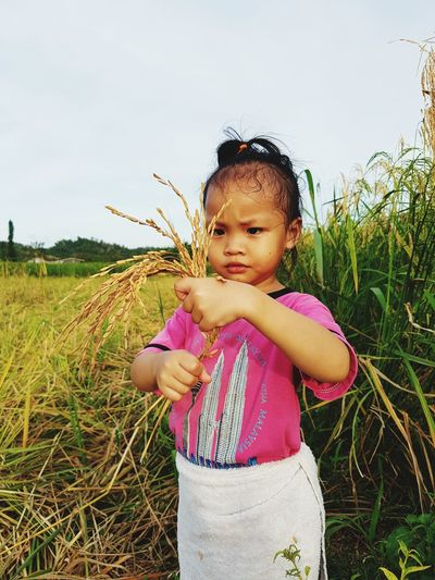 Cute Girl Holding Crop While Standing On Field Against Sky