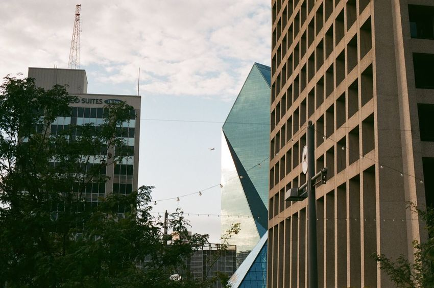 Architecture Building Exterior Built Structure City Window Skyscraper Day Sky Low Angle View Outdoors No People Modern Tree