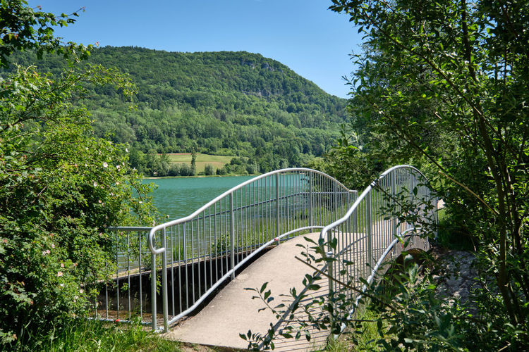 Footbridge over plants and trees against sky