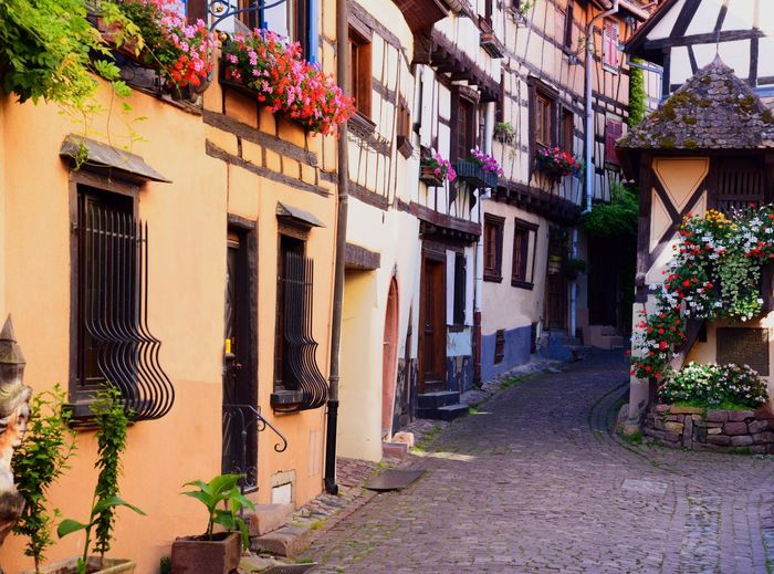 Small village, Eguisheim, in Alsace. Small Village Alsace Eguisheim Colors Old Buildings Town Flowers Beautiful Beautiful Place