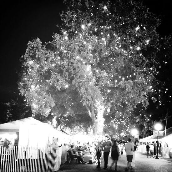Oktoberfest 2014 Twinkle Lights  Happiness