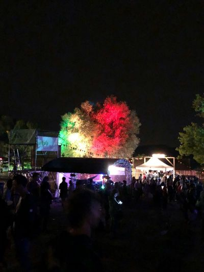Night Illuminated Large Group Of People Crowd Group Of People Arts Culture And Entertainment Real People Celebration Tree Plant Glowing Outdoors