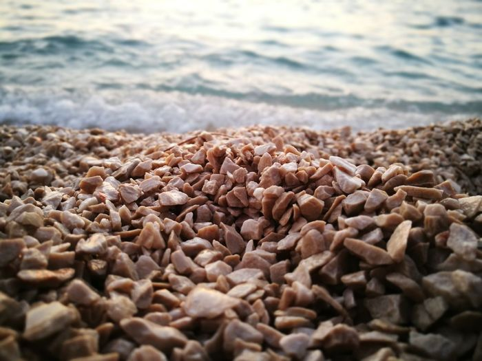 Surface level of pebbles at beach