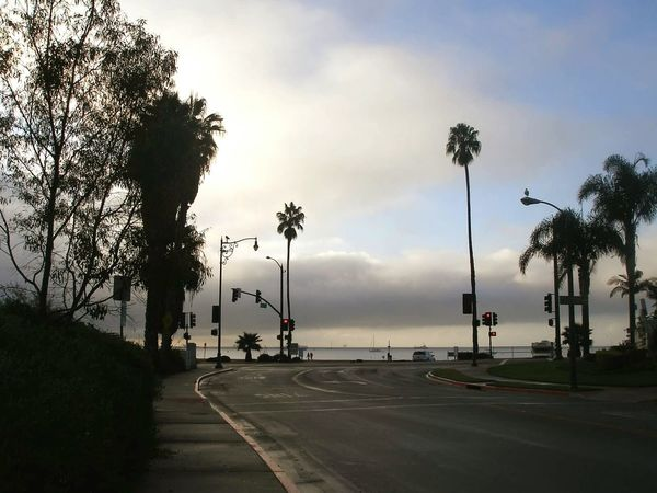 Santa Barbara View Santabarbara California CA Ocean Palm Trees Palms Beauty In Nature Beautiful WestCoast Sky Clouds And Sky Silhouette Street Streetlight Stoplight Intersection California Dreamin