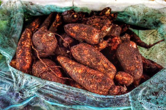 Food And Drink Indoors  No People Food Close-up Seafood Healthy Eating Freshness Day Tapioca Orange Color Orange Tapioca Rhizome Rhizophora Rhizome Plant