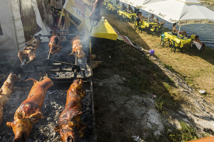 Guca, Serbia, Trumpet Festival Balkans Bar Barbecue Barbecue Grill Gastronomy Guca High Angle View Outdoors Pigs Serbia Serbian Food Tables And Chairs
