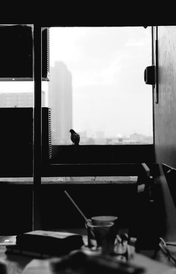 pigeon in Bangkok metropolis Blackandwhite Monochrome Bangkok Office City Life Bangkok, Thailand Thailand Ratchathewi Fly Fly High Look Outside Tower Pigeon Bird Building High Building Corridor Outside Domestic Room Home Interior