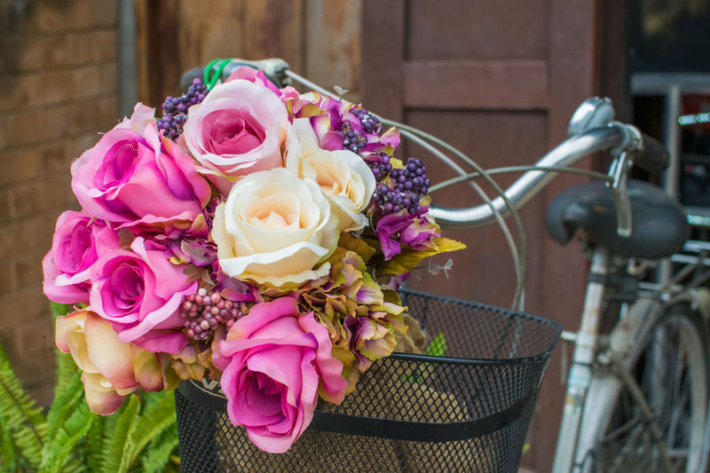 beautiful flower in basket bikecycle Beautiful Basket Beauty In Nature Bikecycle Bouquet Celebration Close-up Colorful Day Flower Flower Head Focus On Foreground Fragility Freshness Metal Nature No People Outdoors Petal Pink Color Plastic Rose - Flower Wedding