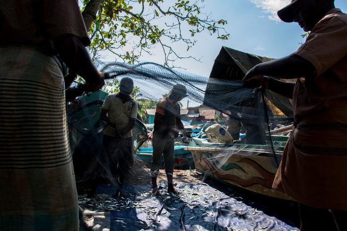 Negombo fishermen Artisanal Fishing Fish Fishermen Fishnets Men Negombo Shadows Sri Lanka