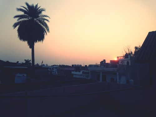 Palm Tree Sunset Tree Built Structure Outdoors Architecture Sky City No People Night Taking Photos Editing Photography Random Shots Check This Out Travel Photography First Eyeem Photo
