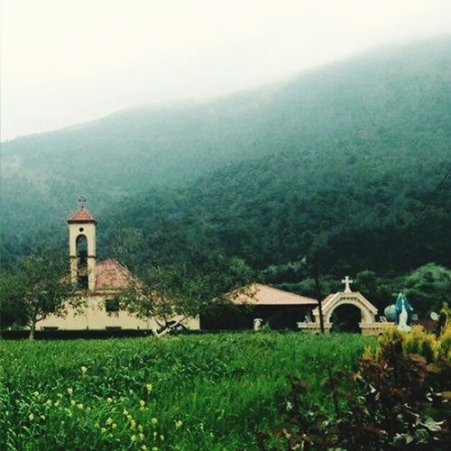 Nature_collection Church (:
