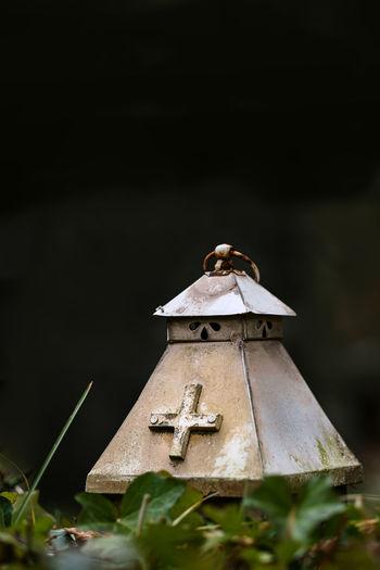 Close-up of birdhouse on wood