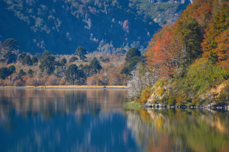 Autumn is coming... Water Reflection Lake Tree Scenics - Nature Tranquil Scene Autumn Beauty In Nature Tranquility Plant No People Waterfront Change Day Nature Non-urban Scene Sky Idyllic Outdoors Autumn Collection Scenics Mirror Mountain Landscape Autumn