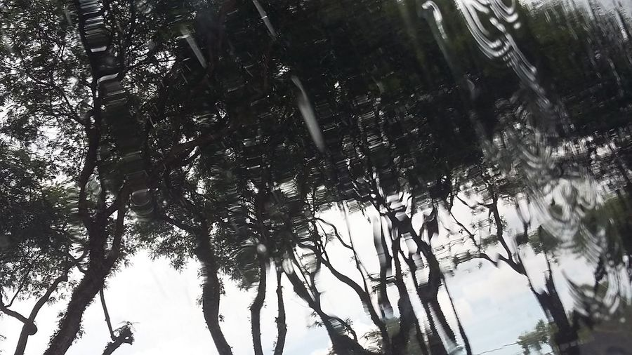 Rainy Glass curitiba Brazil Rainy Day