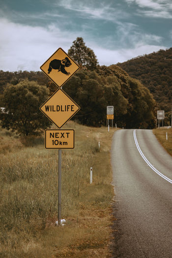 Sign Communication Road Text Road Sign Sky Cloud - Sky Guidance Transportation No People Plant Direction Symbol Information Nature Tree Warning Sign Western Script Day Information Sign Outdoors Crossing Sign Australia Koala Wildlife
