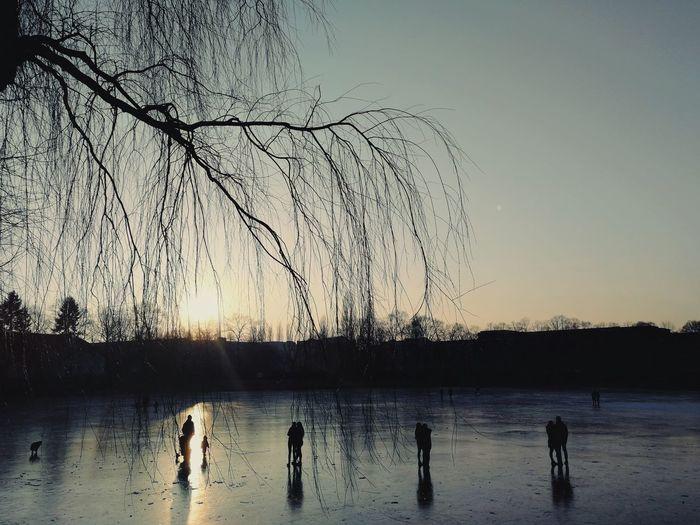 Sunset Berlin Sunlight Obersee Oberseepark Winter On Ice
