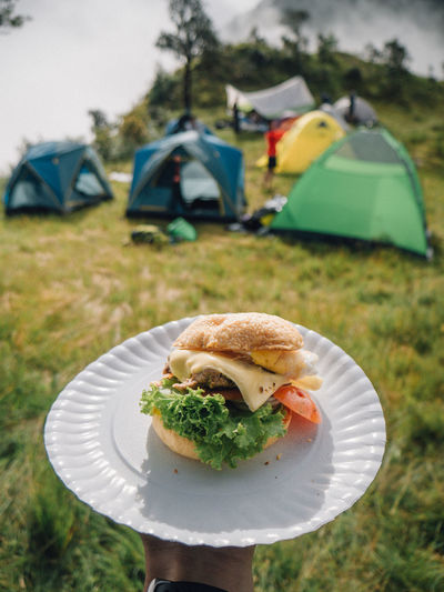 Cropped hand of person holding burger holding plate at campsite